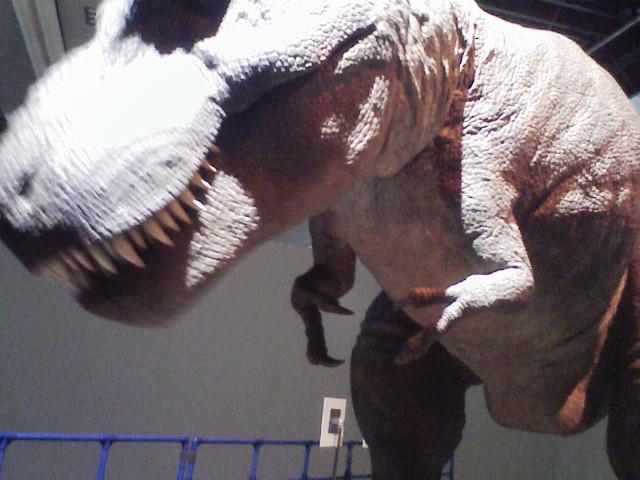 ティラノサウルス01