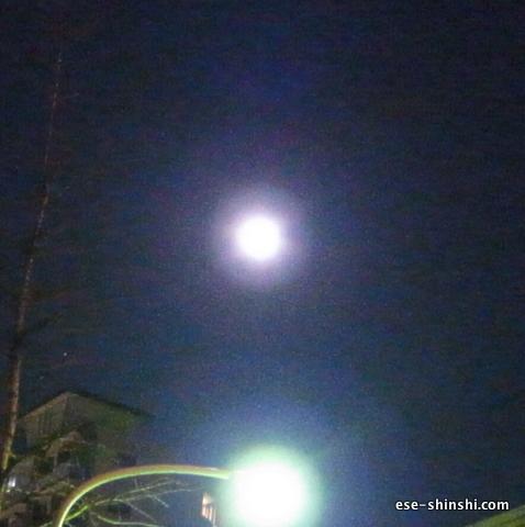 月食-六本木